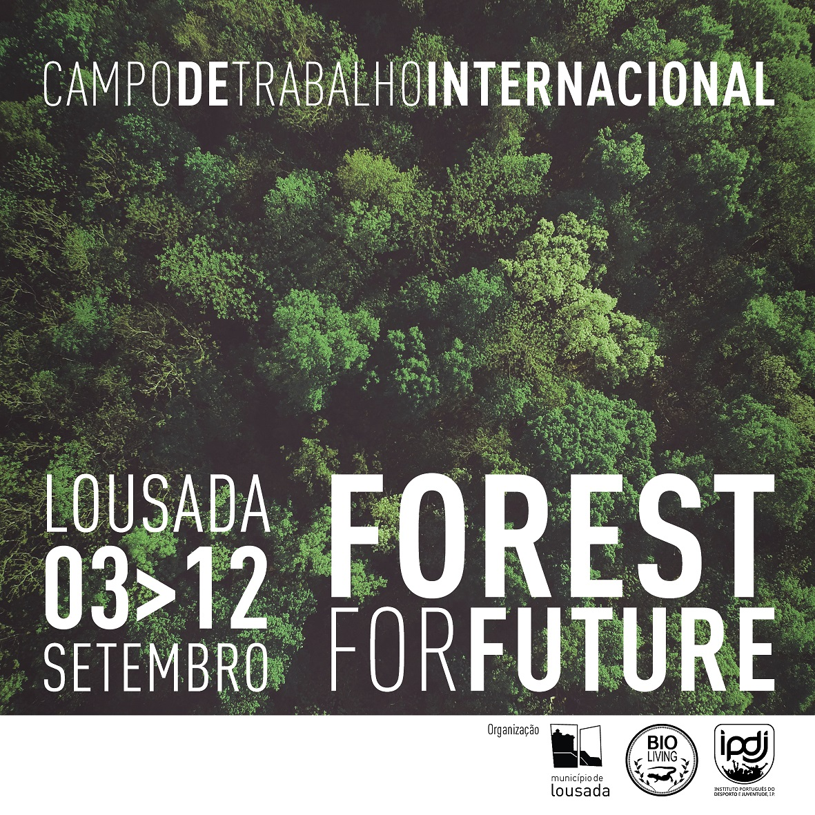 """Forest For Future"" Campo de Voluntariado Internacional decorre de  3 e 12 de setembro, em Lustosa"
